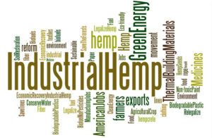 hemp misconceptions industrial hemp buy hemp oil buy cbd oil CBD